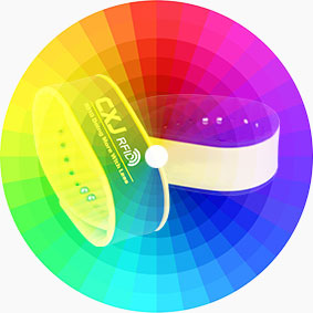 Buy Colorful RFID Silicone Wristband RS-AW011